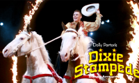 Dixie Stampede Package